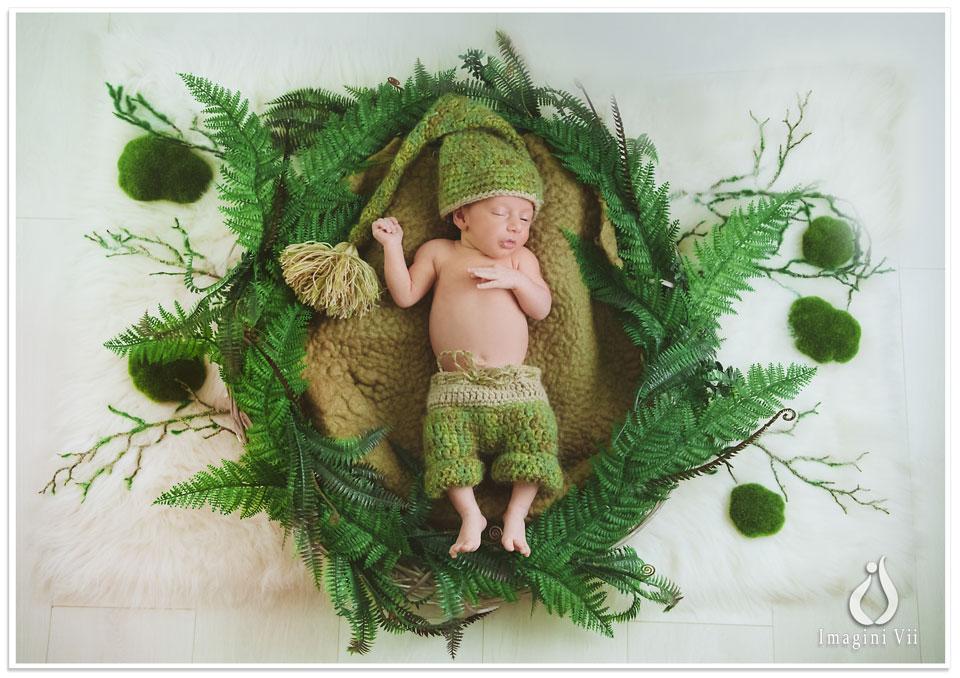 Nou născut într-un coșulet verde